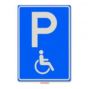 Parkeergelegenheid Gehandicapten