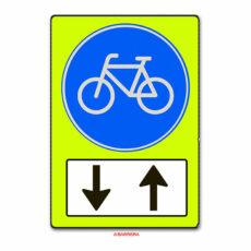 Tegemoetkomende fietsers